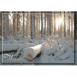 Der Harz - Winterlandschaft - Ansichtskarte