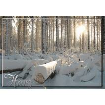 Harz - Winter - Viewcard