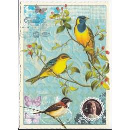 Vögel - blau/gelb - Postkarte