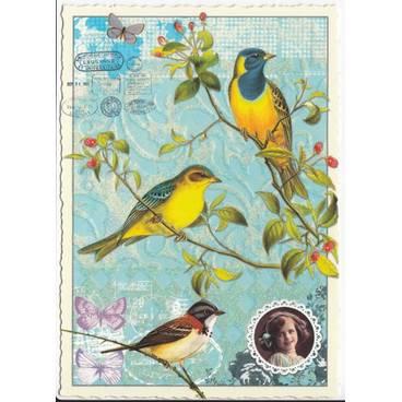 Vögel - blau/gelb