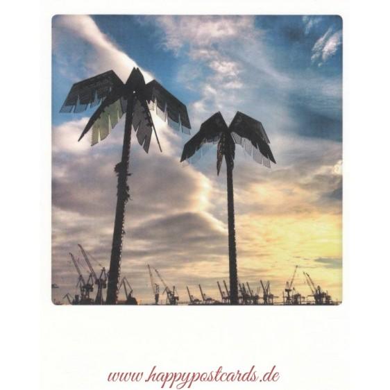 Palm trees  Antonipark - Hamburg - PolaCard
