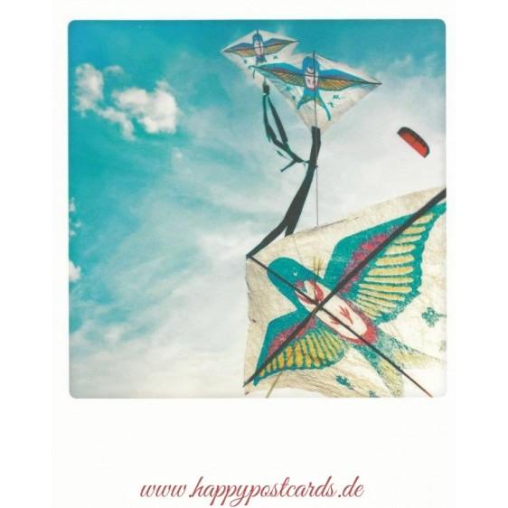 Swallows in the Sky - PolaCard