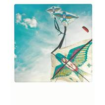 Swallows in the Sky - PolaCard
