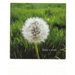 Make a wish - PolaCard