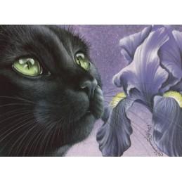 Dark Iris - Garmashova - Postcard