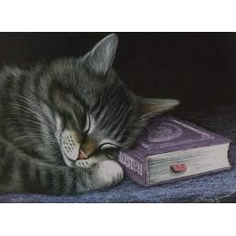 Großer Leser - Garmashova Postkarte