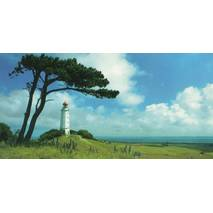 Hiddensee - Leuchtturm - Panoramakarte