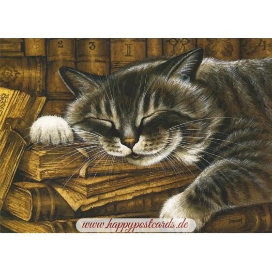 Im Antiquitätenladen - Garmashova Postkarte