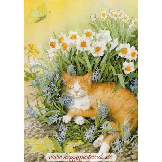 113 - Cat in Flowers - Postcard