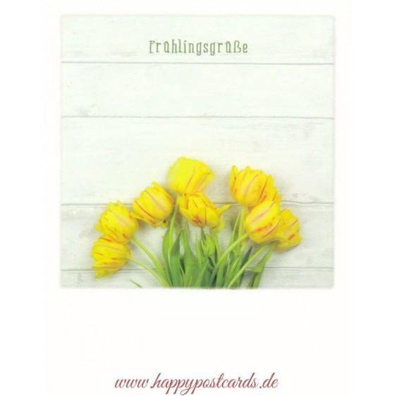 Spring Greetings - PolaCard