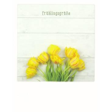 Frühlingsgrüße - PolaCard