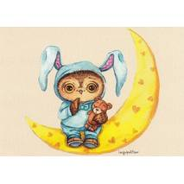 Night Owl -Paltser - Postcard