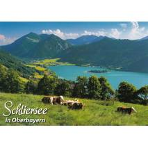 Schliersee - Viewcard