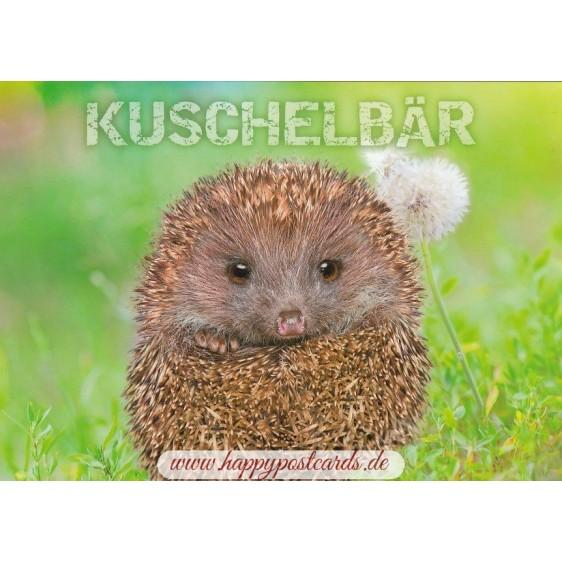 Hedgehog - Kuschelbär - Viewcard