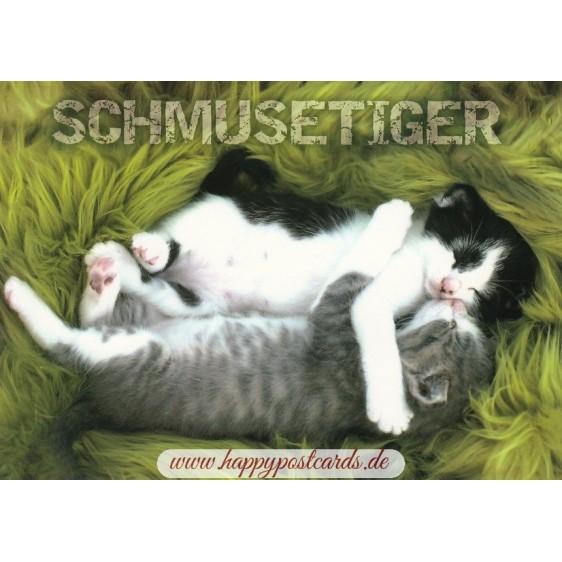 Cats - Schmusetiger - Viewcard