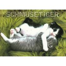 Cats - Schmusetiger - Viewcard