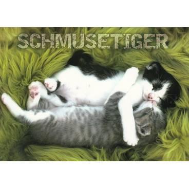 Katzen - Schmusetiger - Ansichtskarte