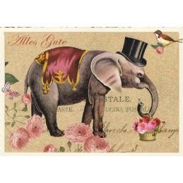 Elephant - Tausendschön - Postcard