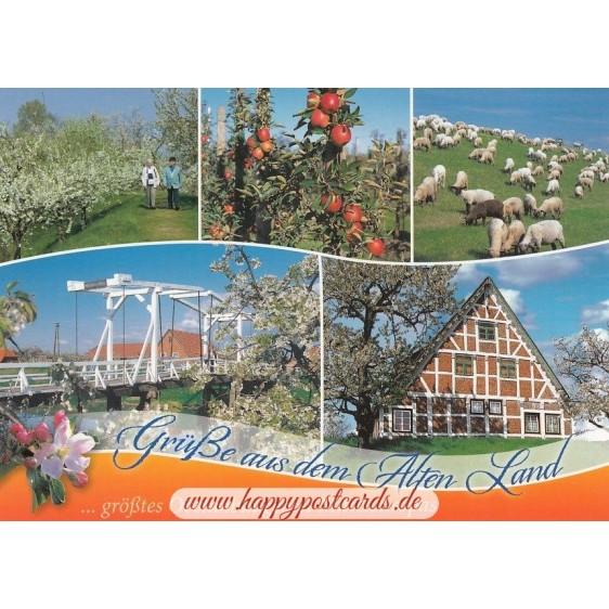 Das Alte Land 2 - Postkarte