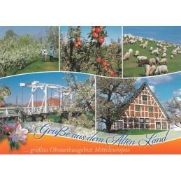 Das Alte Land 2 - Postcard