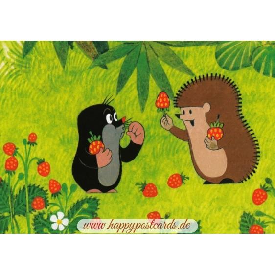 Der Maulwurf und Igel mit Erdbeeren