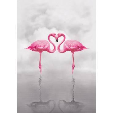 Flamingos - Kontraste - Postkarte