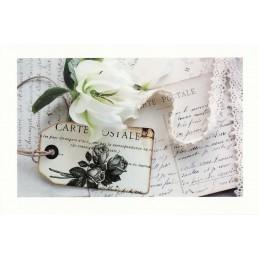 Carte Postale - Aquarupella Postkarte