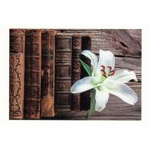Old books and a white Lily - Aquarupella postcard