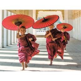 Novizen - Bagan, Myanmar - Aquarupella Postkarte