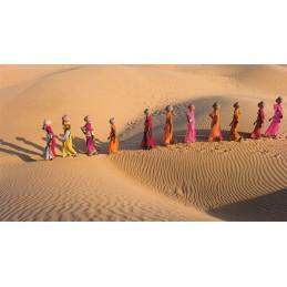 Frauen in der Wüste Thar - Rajasthan - Aquarupella Postkarte