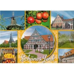 Beautiful Jork - Postcard