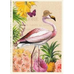 Flamingo - Tausendschön - Postcard