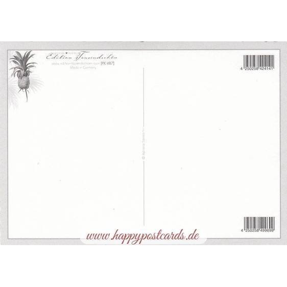 Hummingbird - Tausendschön - Postcard