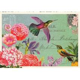 Kolibri - Tausendschön - Postkarte