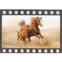 Galoppierende Pferde - DIA-Postkarte