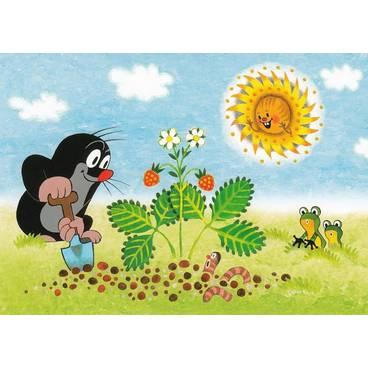 Der Maulwurf mit Erdbeerpfanze - Postkarte