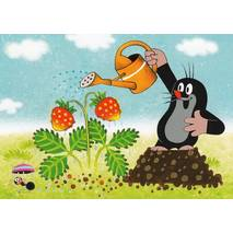 The Mole with a watering can - Krtek - Postcard