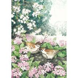 103 - Vögel im Nest - Löök Postkarte