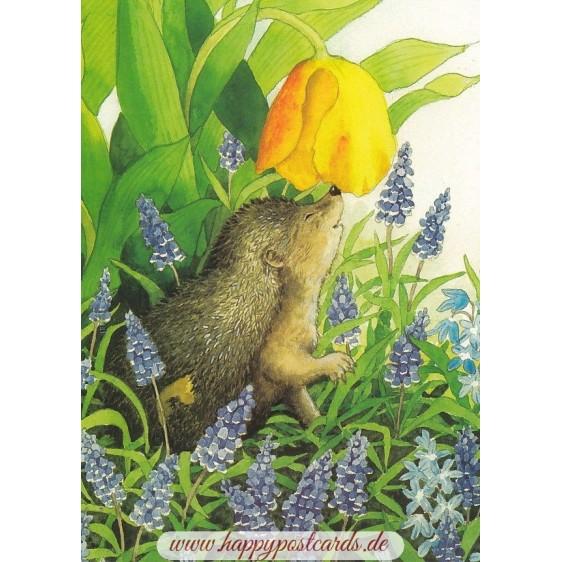 117 - Igel und Traubenhyazinthen - Löök Postkarte
