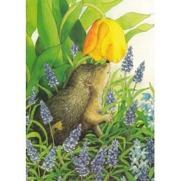 117 - Hedgehog and grape hyacinth - Postcard