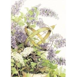 105 - Lilac - Postcard