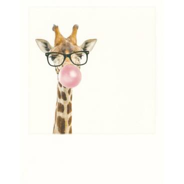Giraffe with bubblegum - PolaCard