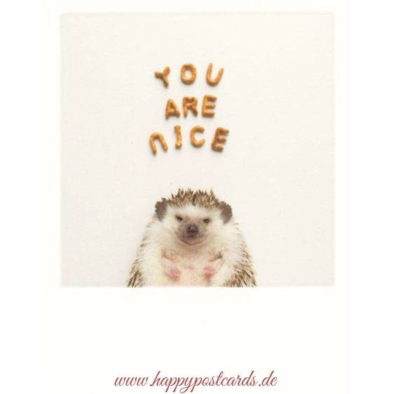 Hedgehog - You are nice - PolaCard