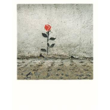 Rose am Wegesrand - PolaCard