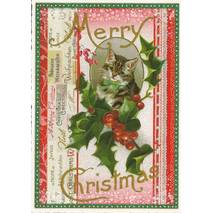 Merry Christmas - Portrait of a Cat - Tausendschön - Postcard