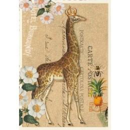 Giraffe - Tausendschön - Postkarte