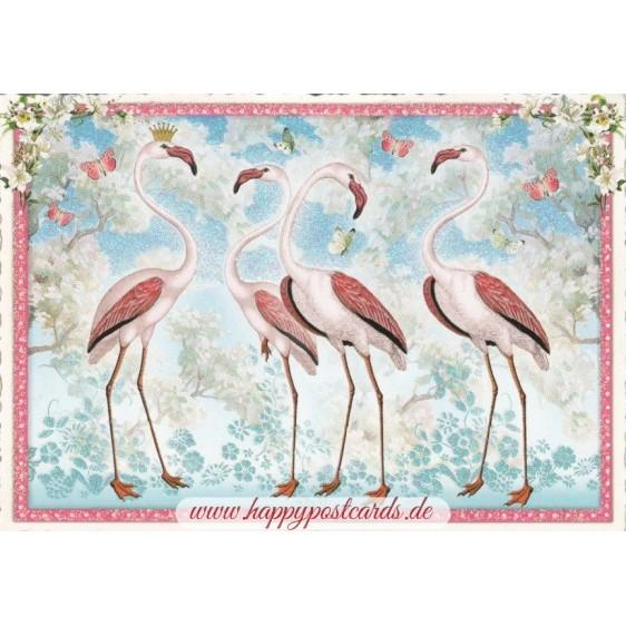 4 Flamingos - Tausendschön - Postcard