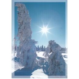Schneelandschaft - Ansichtskarte