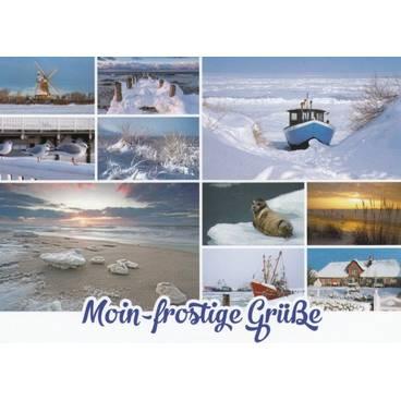 Moin-frostige Grüße - Ansichtskarte