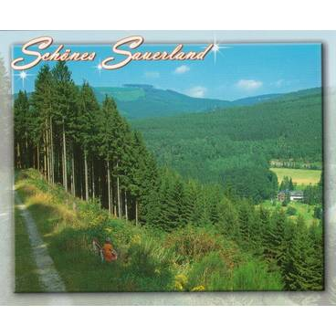 Schönes Sauerland - Ansichtskarte